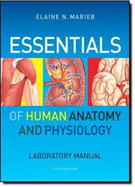 Fundamentals Of Anatomy And Physiology 9th Edition Download Combo Holes Human Anatomy Physiology With Connect Plus Lab Manual