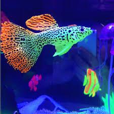 decor goldfish peacoak jellyfish aquarium decoration artificial