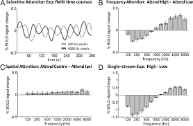 tuning in to sound frequency selective attentional filter in