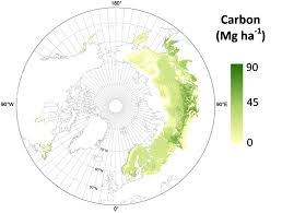 Russian Boreal Forest Disturbance Maps by Lidar Based Biomass Estimates Boreal Forest Biome Eurasia 2005 2006