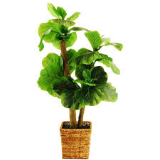 trees artificial plants artificial plants flowers the home fiddle leaf fig tree in a square basket