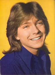 shag haircut 1970s styling david cassidy hairstyles classic mens shag haircuts