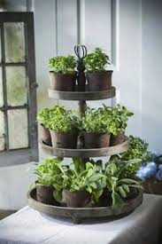 kitchen herb garden ideas herb garden ideas for the home gardening herbs