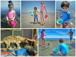 vancouver island getaways 6 awesome things to do on vancouver island family canada