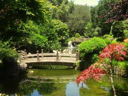 college movers san mateo japanese garden san mateo search open daily in central