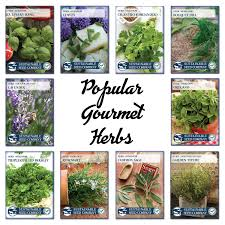 herb amazon com sustainable seed 10 variety culinary herb seed