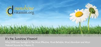 Do You Get Vitamin D From Tanning Bed Agi U0027s Tanning