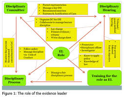 experiences and challenges of evidence leaders