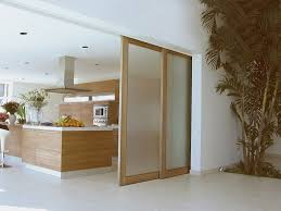 frosted glass sliding doors in the kitchen types of sliding