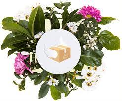 livraison de fleurs au bureau livraison de fleurs à oujda fleuriste oujda en ligne