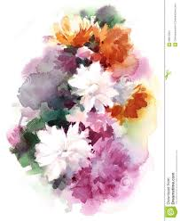 chrysanthemum watercolor mums flowers illustration hand painted