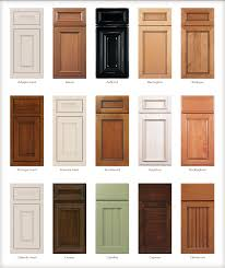 Kitchen Cabinet Door Styles Pictures Modern Cabinets - Style of kitchen cabinets