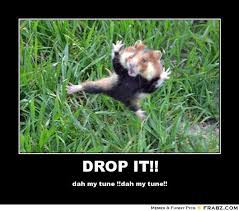 Drop It Meme - i love sloth