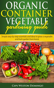 cheap vegetable packaging ideas find vegetable packaging ideas