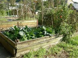 Raised Gardens For Beginners - 80 best unique raised beds images on pinterest raised beds