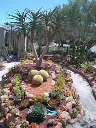 cactus garden desert garden champsbahrain com
