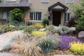Drought Friendly Landscaping by Drought Tolerant Landscaping Bing Images Garden Pinterest