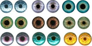 15 best images of printable eye templates for dolls printable