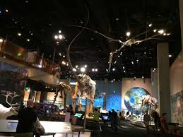 perot museum of nature and science dallas the dinosaur
