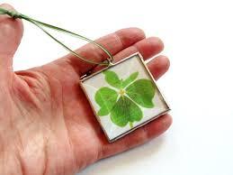 43 best four leaf images on four leaf clover clovers
