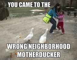 Goose Meme - geese squad by yayayaya meme center