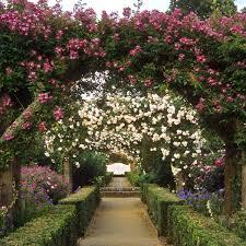 garden arch design wooden best 25 garden arches ideas on