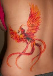 bird tattoo for men phoenix mythical bird pictures phoenix rises from the ashes in