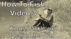 fishing sector best fishing tricks and techniques