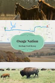 32 best things to do in osage county images on pinterest