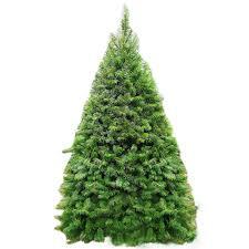 douglas fir tree 7 8 douglas fir trees trees products