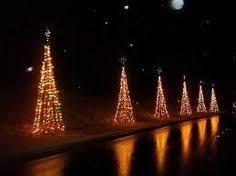 Lake Lanier Nights Of Lights Lake Lanier Lights Http Www Discoverlakelanier Com Magical
