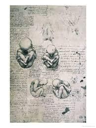 human anatomy da vinci posters at allposters com