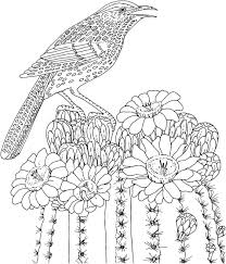 printable advanced coloring pages flowers printable downlload