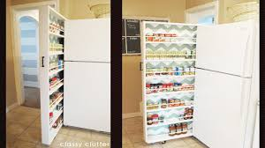 Kitchen Space Savers by Pantry Cabinet Diy Pantry Cabinet With Innovative Kitchen