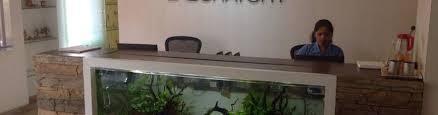 aquarium design exle excel laboratory photos naupada thane west mumbai pictures