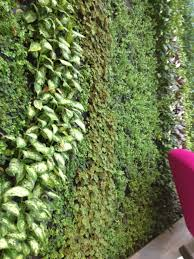 living green wall project for office interior urban planters