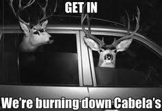 Oh Deer Meme - deer hunting humor oh deer knives dinners and humor