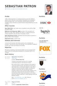 Insurance Resume Template Insurance Resume Samples Visualcv Resume Samples Database