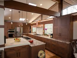 Kitchen Cabinet Stain Ideas Stain Colors For Cabinets Kitchen Tropical With Bathroom Remodel
