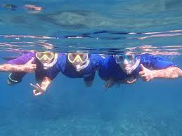 Oklahoma Snorkeling images Maui snorkel tours kihei 2018 all you need to know before you jpg