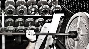 Phil Heath Bench Press Bench Press One Rep Max Calculator Muscle And Brawn