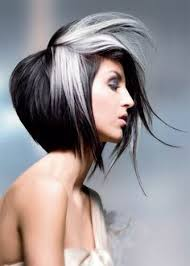 how to tame gray hair beautiful way to tame the grey the anatomy of grey pinterest