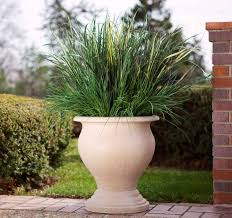 Shrubs For Patio Pots Planting Tips In Large Outdoor Planters Front Yard Landscaping Ideas