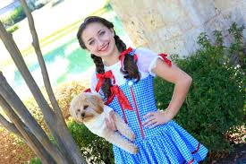 dorothy wizard of oz halloween costumes bailey u0027s dorothy braids halloween hairstyles cute girls hairstyles