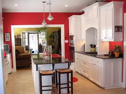 kitchen color ideas with oak cabinets white countertop maple