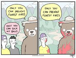 Only You Can Prevent Forest Fires Meme - rhm now remember only you can prevent forest fires album on imgur