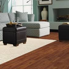 simple living room with cheap frise shag starch 8 ft x 10 ft area