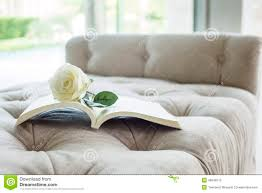 White Rose Furniture Book On Sofa With White Rose Stock Photo Image 48246513