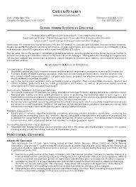 Hr Manager Resumes Hr Executive Resume Sample Download Hr Administration Sample