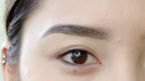 How To Do Eyebrow How To Do Eyebrow Makeup With Eyeshadow Mugeek Vidalondon